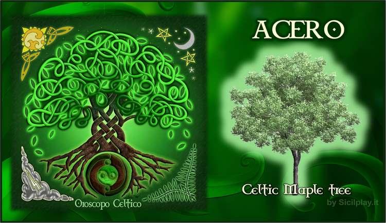 Oroscopo Celtico - Segno Acero