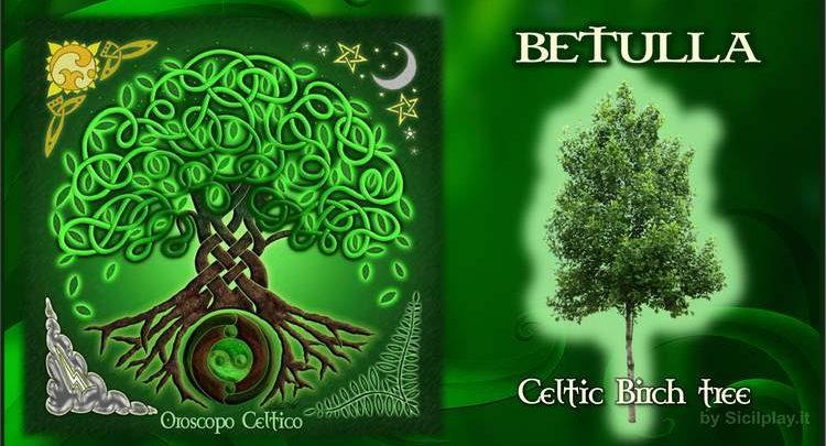 Oroscopo Celtico - Segno Betulla