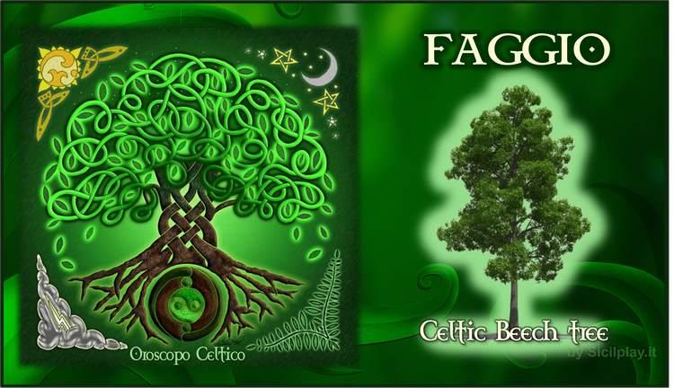 Oroscopo Celtico - Segno Faggio