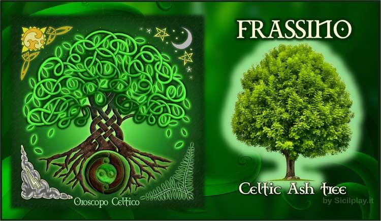 Oroscopo Celtico - Segno Frassino