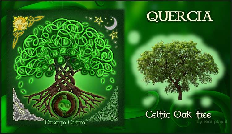 Oroscopo Celtico - Segno Quercia