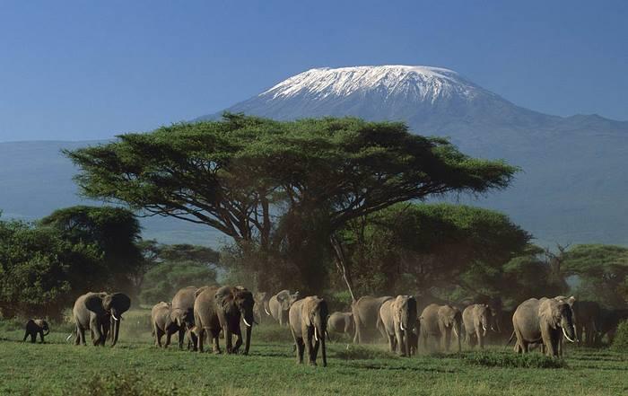 Parchi e Riserve naturali del Kenya