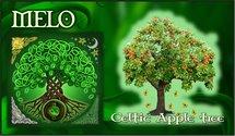 Oroscopo Celtico Melo
