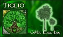 Oroscopo Celtico Tiglio